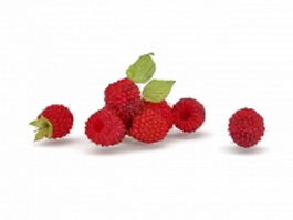 Fresh mulberry fruit 3d model preview