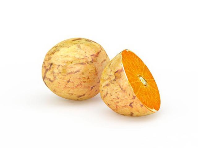 Navel orange and split 3d rendering