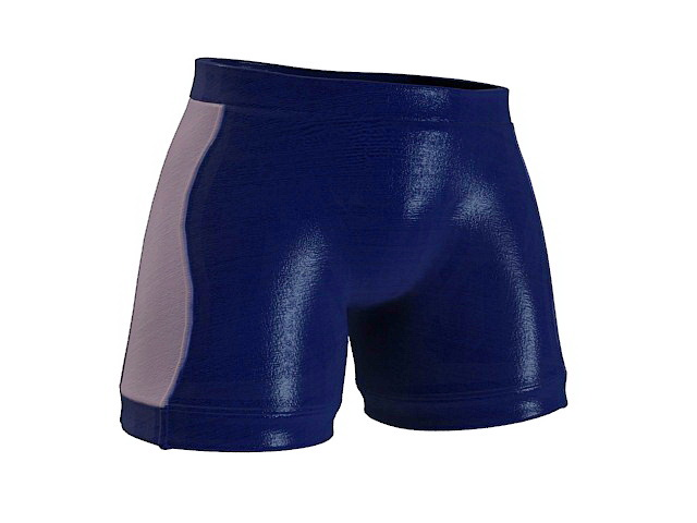 Square cut swim trunks 3d rendering