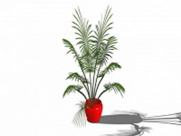 Indoor potted palm 3d preview