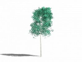 Small garden tree 3d model preview
