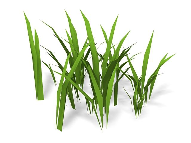 Bamboo grass 3d rendering