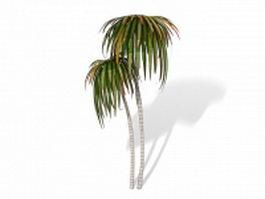 Dracaena tree 3d model preview
