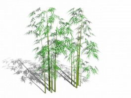 Bamboo trees 3d preview