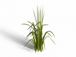 Bent grass 3d preview