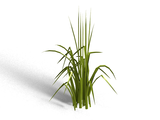 Bent grass 3d rendering