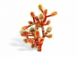 Red coral 3d preview