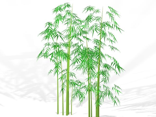 Bamboo plants 3d rendering