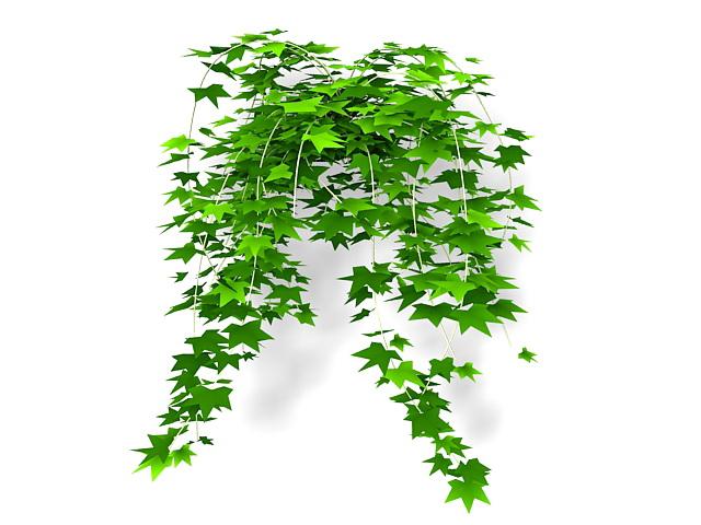 Ivy leaf vine 3d rendering