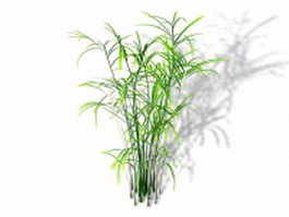 Reed palm plant 3d preview
