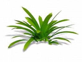 Cymbidium Orchid plant 3d model preview