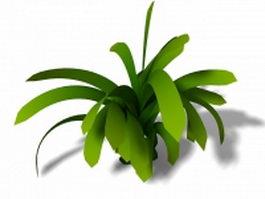 Kaffir lily houseplant 3d model preview