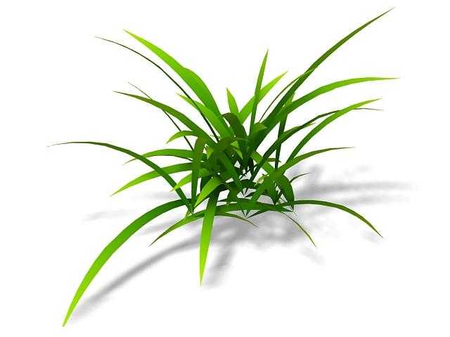 Pasture grass 3d rendering