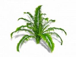 Ornamental fern 3d model preview