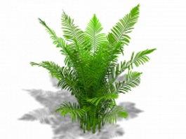 Areca palm plant 3d model preview