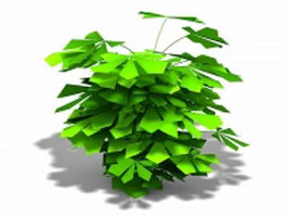 Philodendron indoor plant 3d model preview