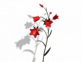 Clustered bellflower 3d model preview