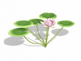 Pink water lily flowers 3d preview