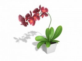 Potted plant with red flowers 3d preview
