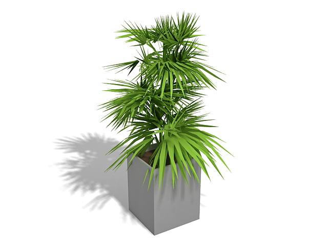 Indoor potplant 3d rendering