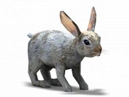 Bunny rabbit 3d model preview