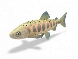 Redband trout 3d model preview