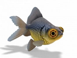 Telescope-eyed goldfish 3d preview
