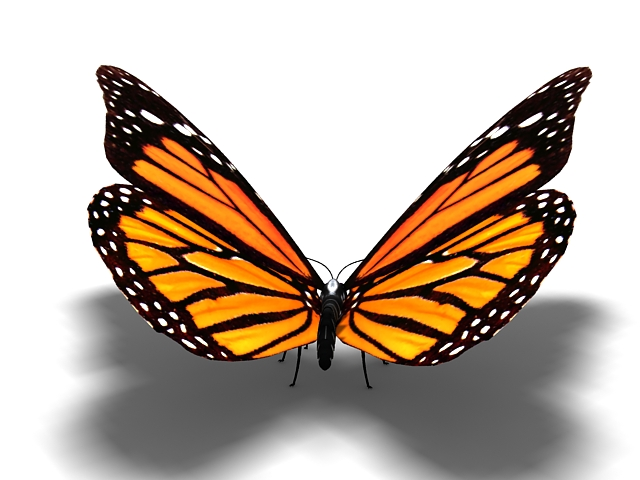 Tiger striped butterfly 3d rendering