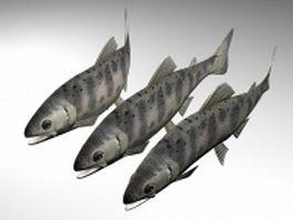 Masu salmon 3d model preview