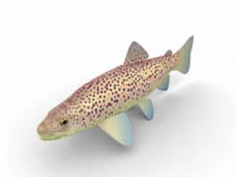 Brown trout 3d preview
