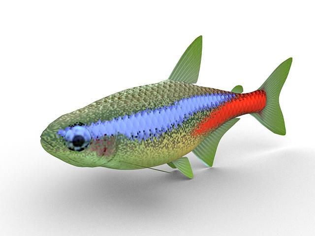 Neon tetra aquarium fish 3d rendering