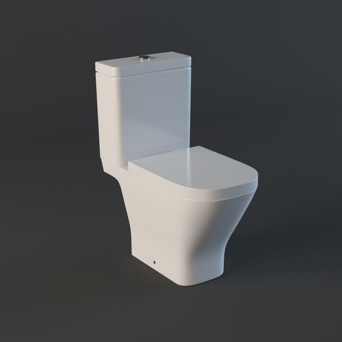 Dual Flush Toilet 3d Model 3ds Max,Autodesk FBX Files Free