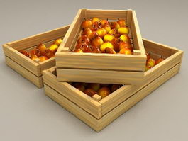 Plumleaf Crab Apple in Box 3d preview