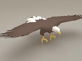 Bald Eagle Wings 3d model preview