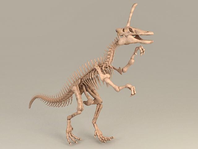 Skeleton Dinosaur Bones 3d rendering