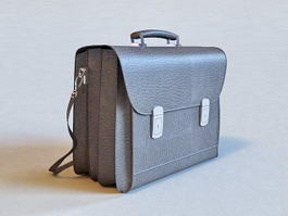 Professional Leather Briefcase 3d preview