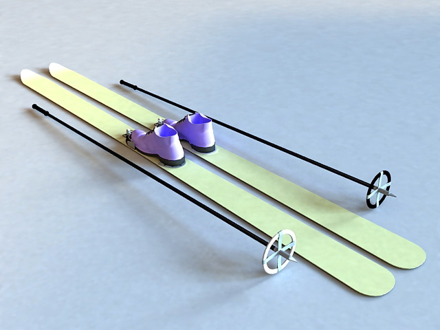Skis with Poles 3d rendering