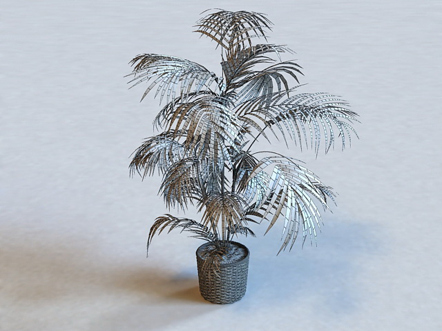 Potted Palm Tree 3d rendering