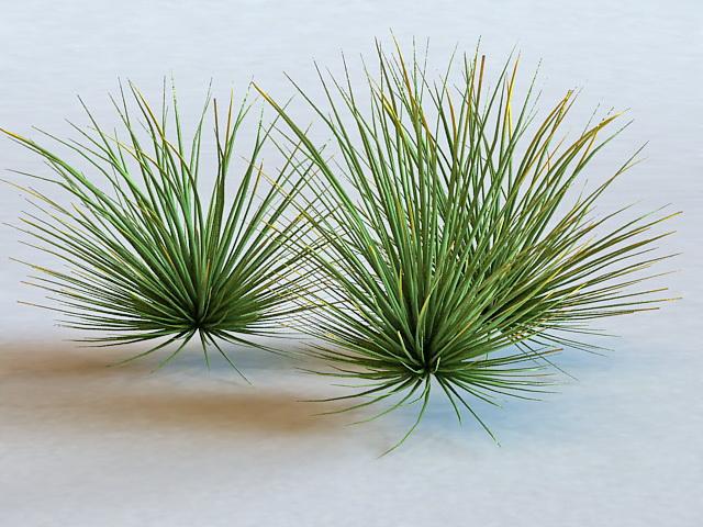 Nature Green Grass 3d rendering