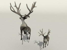 Mom and Baby Deer 3d model preview