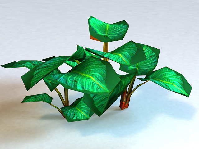 Tropical Green Plant Low Poly 3d rendering