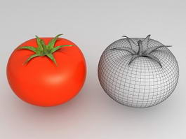 Red Tomato 3d model preview
