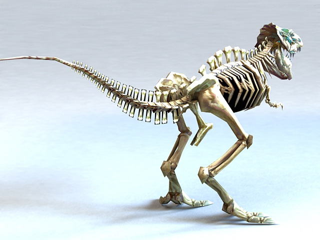 Bone Tyrannosaurus Rex 3d rendering