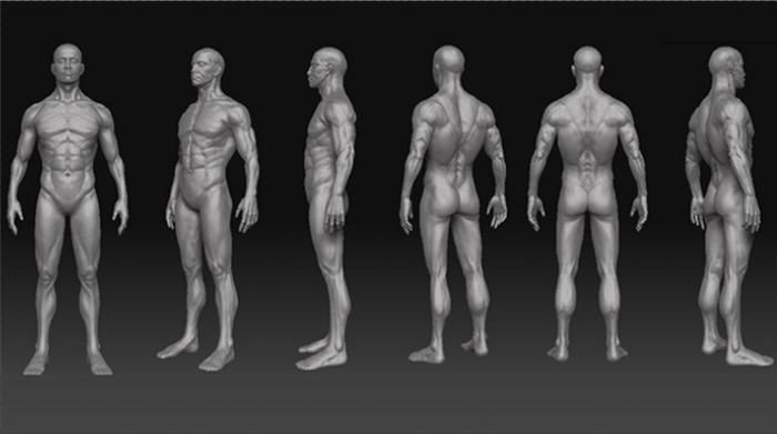 Male Calisthenics Body 3d rendering