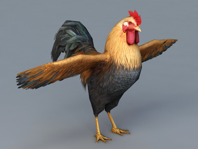Beautiful Rooster 3d Model 3ds Max Files Free Download
