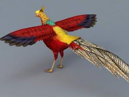 Golden Pheasant Bird 3d model preview