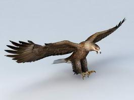 War Eagle 3d model preview