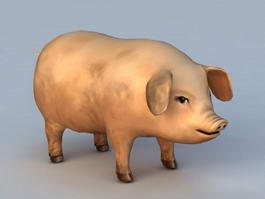 Domestic Pig 3d model preview