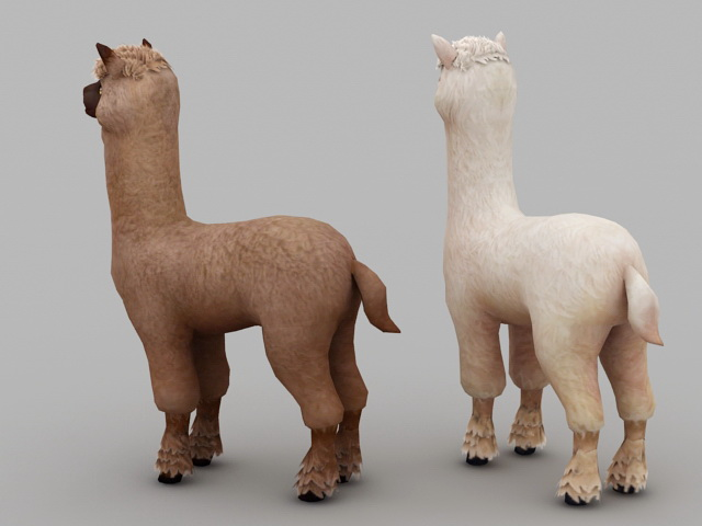 Cute Alpaca 3d rendering