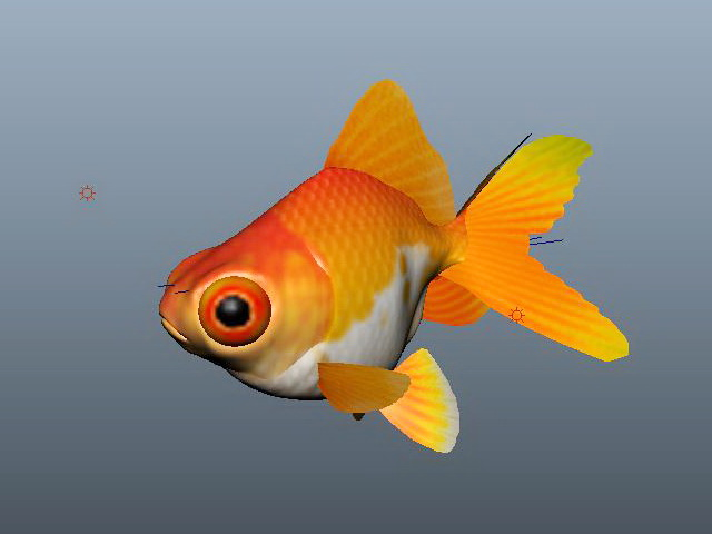 Fancy Goldfish 3d rendering